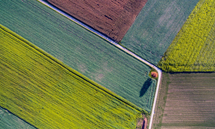 Space applications can help improve the efficiency of agricultural production and reduce its environmental impact.
